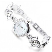 Dolphin Watch Fashion inoxydable en forme